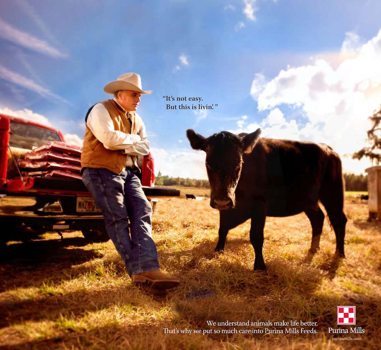 Purina_cattle_printad-2.jpg